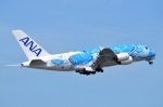 amagoさんが、成田国際空港で撮影した全日空 A380-841の航空フォト(写真)