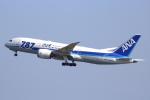 NANASE UNITED®さんが、羽田空港で撮影した全日空 787-8 Dreamlinerの航空フォト(写真)