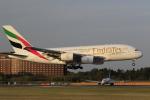 ☆ライダーさんが、成田国際空港で撮影したエミレーツ航空 A380-861の航空フォト(写真)