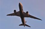 mild lifeさんが、伊丹空港で撮影した全日空 787-8 Dreamlinerの航空フォト(写真)