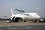 sin747さんが、羽田空港で撮影した日本航空 787-8 Dreamlinerの航空フォト(写真)