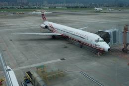 ピーノックさんが、台北松山空港で撮影した遠東航空 MD-82 (DC-9-82)の航空フォト(飛行機 写真・画像)