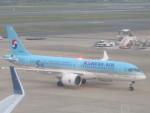 flyflygoさんが、福岡空港で撮影した大韓航空 A220-300 (BD-500-1A11)の航空フォト(写真)