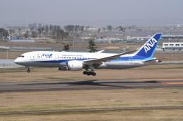 kumagorouさんが、仙台空港で撮影した全日空 787-8 Dreamlinerの航空フォト(写真)