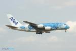 YuukiToonoさんが、成田国際空港で撮影した全日空 A380-841の航空フォト(写真)