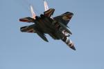 ゆくもこさんが、小松空港で撮影した航空自衛隊 F-15DJ Eagleの航空フォト(写真)