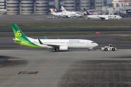 ハム太郎。さんが、羽田空港で撮影した春秋航空日本 737-8ALの航空フォト(写真)