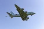 またぁりさんが、岐阜基地で撮影した海上自衛隊 P-1の航空フォト(写真)