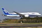 あしゅーさんが、成田国際空港で撮影した全日空 787-8 Dreamlinerの航空フォト(写真)