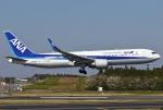 あしゅーさんが、成田国際空港で撮影した全日空 767-381/ERの航空フォト(写真)