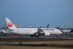 zero1さんが、成田国際空港で撮影した日本航空 787-8 Dreamlinerの航空フォト(飛行機 写真・画像)