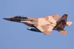 多摩川崎2Kさんが、小松空港で撮影した航空自衛隊 F-15DJ Eagleの航空フォト(写真)