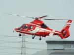otromarkさんが、八尾空港で撮影した福岡市消防局消防航空隊 AS365N3 Dauphin 2の航空フォト(写真)