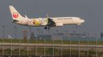くろまるさんが、羽田空港で撮影した日本航空 737-846の航空フォト(写真)