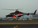 otromarkさんが、八尾空港で撮影した朝日航洋 430の航空フォト(写真)
