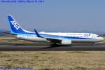 Chofu Spotter Ariaさんが、静岡空港で撮影した全日空 737-881の航空フォト(写真)