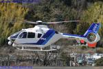 Chofu Spotter Ariaさんが、静岡ヘリポートで撮影したオールニッポンヘリコプター EC135T2の航空フォト(写真)