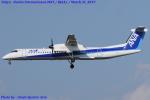 Chofu Spotter Ariaさんが、成田国際空港で撮影したANAウイングス DHC-8-402Q Dash 8の航空フォト(飛行機 写真・画像)