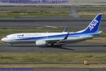Chofu Spotter Ariaさんが、羽田空港で撮影した全日空 737-881の航空フォト(写真)