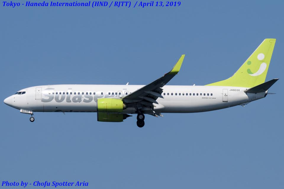Chofu Spotter Ariaさんのソラシド エア Boeing 737-800 (JA803X) 航空フォト