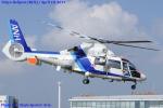 Chofu Spotter Ariaさんが、東京ヘリポートで撮影したオールニッポンヘリコプター AS365N2 Dauphin 2の航空フォト(写真)