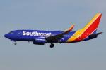 masa707さんが、ロサンゼルス国際空港で撮影したサウスウェスト航空 737-7H4の航空フォト(写真)