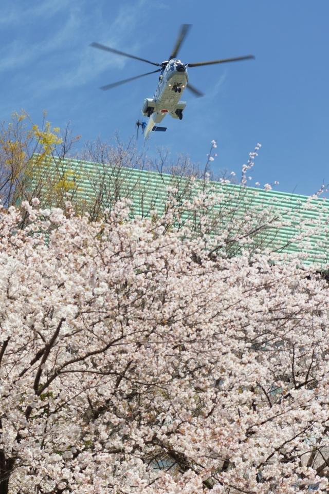 市ヶ谷地区 - Ichigaya Areaで撮影された市ヶ谷地区 - Ichigaya Areaの航空機写真(フォト・画像)
