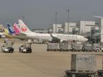 ヒロリンさんが、福岡空港で撮影した日本航空 737-846の航空フォト(写真)
