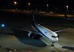 まひろさんが、中部国際空港で撮影した全日空 767-381/ERの航空フォト(写真)