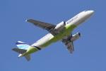 ANA744Foreverさんが、成田国際空港で撮影したエアプサン A320-232の航空フォト(写真)