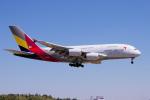 yabyanさんが、成田国際空港で撮影したアシアナ航空 A380-841の航空フォト(飛行機 写真・画像)