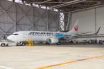 ちゃぽんさんが、羽田空港で撮影した日本航空 737-846の航空フォト(飛行機 写真・画像)