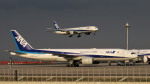 Ocean-Lightさんが、羽田空港で撮影した全日空 777-281/ERの航空フォト(写真)