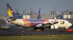 Ocean-Lightさんが、羽田空港で撮影したスカイマーク 737-81Dの航空フォト(写真)