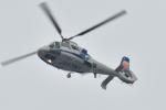 500さんが、自宅上空で撮影したオールニッポンヘリコプター AS365N2 Dauphin 2の航空フォト(写真)