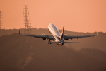 Kenny600mmさんが、伊丹空港で撮影した全日空 737-881の航空フォト(写真)