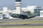 兄ちゃんさんが、名古屋飛行場で撮影した航空自衛隊 C-130H Herculesの航空フォト(写真)