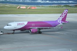 kumagorouさんが、那覇空港で撮影したピーチ A320-214の航空フォト(写真)