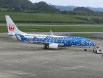 ヒロリンさんが、新石垣空港で撮影した日本トランスオーシャン航空 737-8Q3の航空フォト(写真)