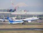 蒲田っ子さんが、羽田空港で撮影した全日空 787-8 Dreamlinerの航空フォト(写真)