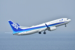 e-zan322さんが、羽田空港で撮影した全日空 737-881の航空フォト(写真)