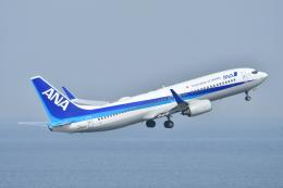 e-zan322さんが、羽田空港で撮影した全日空 737-881の航空フォト(飛行機 写真・画像)