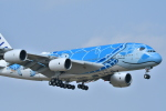 e-zan322さんが、成田国際空港で撮影した全日空 A380-841の航空フォト(写真)