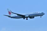 e-zan322さんが、成田国際空港で撮影した中国国際航空 737-89Lの航空フォト(写真)