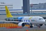 e-zan322さんが、成田国際空港で撮影したロイヤルブルネイ航空 A320-251Nの航空フォト(写真)