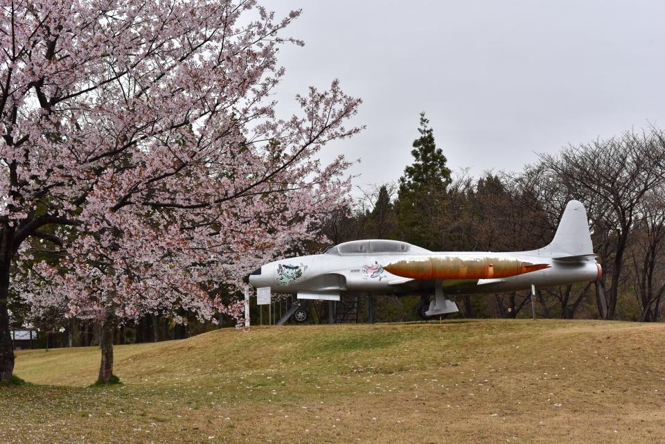 falconさんの航空自衛隊 Lockheed T-33 Shooting Star (51-5637) 航空フォト