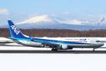 セブンさんが、新千歳空港で撮影した全日空 737-8ALの航空フォト(写真)