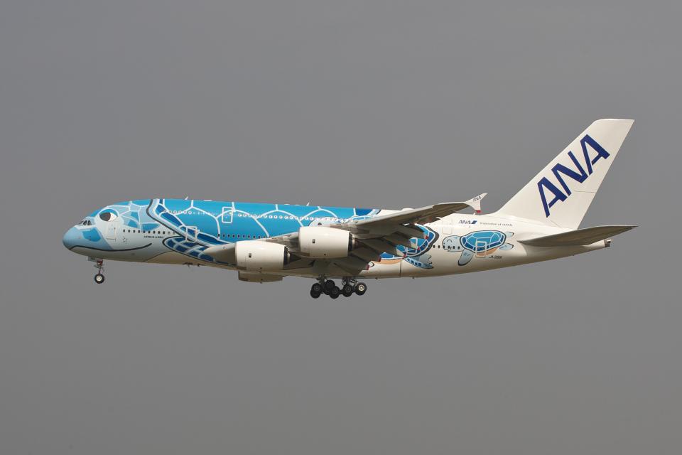 hiko_chunenさんの全日空 Airbus A380 (JA381A) 航空フォト