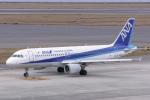 delawakaさんが、中部国際空港で撮影した全日空 A320-211の航空フォト(写真)