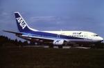 tassさんが、成田国際空港で撮影したエアーネクスト 737-5Y0の航空フォト(飛行機 写真・画像)